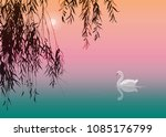 Background With White Swan An...