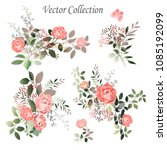 vector.  botanical illustration.... | Shutterstock .eps vector #1085192099