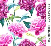 seamless background with peony... | Shutterstock . vector #1085347973