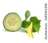 fresh  nutritious  tasty green... | Shutterstock .eps vector #1085361308