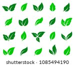 set of abstract isolated green... | Shutterstock . vector #1085494190