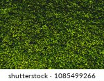 the wall of the house is...   Shutterstock . vector #1085499266