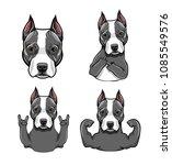 staffordshire terrier dog....   Shutterstock .eps vector #1085549576