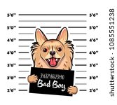 chihuahua criminal. police... | Shutterstock .eps vector #1085551238