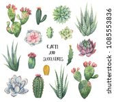 watercolor set of cacti and... | Shutterstock . vector #1085553836