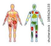 fresh vegetables and fruit in...   Shutterstock .eps vector #1085626133