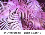 fantasy  nature and background... | Shutterstock . vector #1085633543