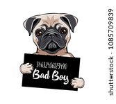 pug prisoner. pug dog bad boy.... | Shutterstock .eps vector #1085709839
