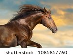 red horse with long mane... | Shutterstock . vector #1085857760