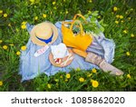 Small photo of Picnic in the park on the grass: tablecloth, bag, hat, sire, strawberry, baguette, top view.