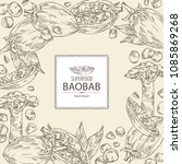 background with baobab  baobab... | Shutterstock .eps vector #1085869268