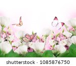 a bouquet of amazing eustoma on ... | Shutterstock . vector #1085876750