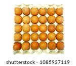 many eggs are in the crate.  | Shutterstock . vector #1085937119