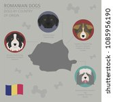 dogs by country of origin.... | Shutterstock .eps vector #1085956190