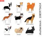 cartoon dogs. drawings dog pets ... | Shutterstock .eps vector #1085973614