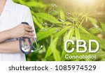 doctor image cannabis of the... | Shutterstock . vector #1085974529