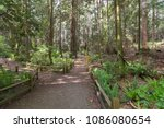a pathway is marked off through ... | Shutterstock . vector #1086080654