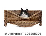 Stock photo black and white cat resting in a wicker bed 108608306