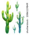 Cactus Watercolor Illustration...