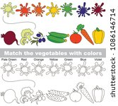 vegetables rainbow set to find... | Shutterstock .eps vector #1086146714