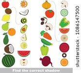 fruits and vegetables set to... | Shutterstock .eps vector #1086147500