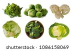different kinds of cabbage in... | Shutterstock . vector #1086158069