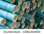 bamboo circle cross section... | Shutterstock . vector #1086203000