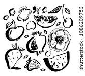 fruits and berries. watermelon  ...   Shutterstock .eps vector #1086209753