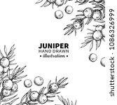 juniper vector drawing frame.... | Shutterstock .eps vector #1086326999