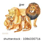 watercolor hand drawn card for...   Shutterstock . vector #1086330716