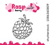 raspberry vector illustration ... | Shutterstock .eps vector #1086360809