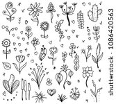 set of hand drawn flowers.... | Shutterstock .eps vector #1086420563