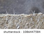 Small photo of Detailed photography of roof covering material with asbestos fibres. Health harmful and hazards effects. Prolonged inhalation of microscopical fibers causes fatal illnesses including lung cancer.