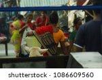 close up shot of an indian... | Shutterstock . vector #1086609560