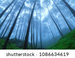 beautiful view of foggy pine... | Shutterstock . vector #1086634619