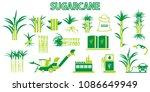 sugar cane icons vector. | Shutterstock .eps vector #1086649949