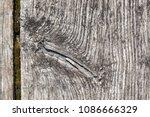old gray wooden board in cracks....   Shutterstock . vector #1086666329