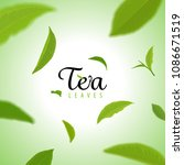 flying green tea leaves on... | Shutterstock .eps vector #1086671519