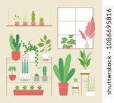 various kind of plant pot in... | Shutterstock .eps vector #1086695816