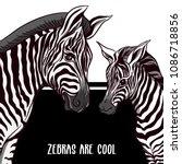 background with zebra mother...   Shutterstock .eps vector #1086718856