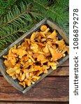 raw chanterelles in a wooden box   Shutterstock . vector #1086879278