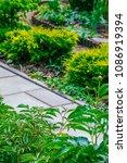beautiful home garden allotment ... | Shutterstock . vector #1086919394