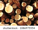 Straight Shot Of Timber Logs I...