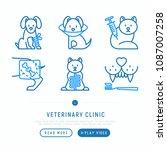 veterinary clinic thin line... | Shutterstock .eps vector #1087007258