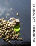 raw organic green cardamom or...   Shutterstock . vector #1087048469