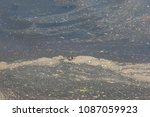 dirt on the surface of the lake ... | Shutterstock . vector #1087059923