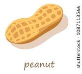 peanut icon. isometric... | Shutterstock . vector #1087113566
