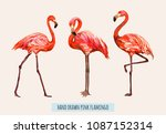 vector hand drawn collection of ... | Shutterstock .eps vector #1087152314