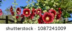 enjoy a california historic...   Shutterstock . vector #1087241009