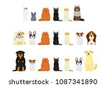 dogs and cats border set | Shutterstock .eps vector #1087341890